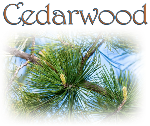 Cedarwood (Natural)