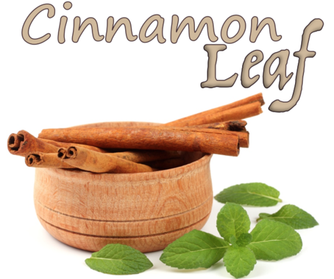 Cinnamon Leaf (Natural)