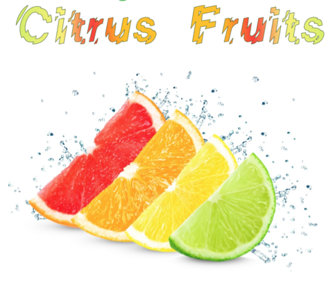 Citrus Fruits (Natural)