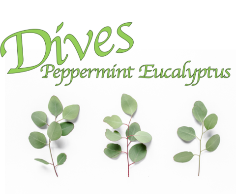 Dives (Peppermint Eucalyptus)