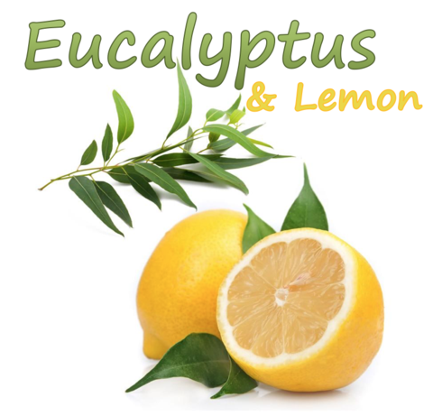 Eucalyptus & Lemon (Natural)