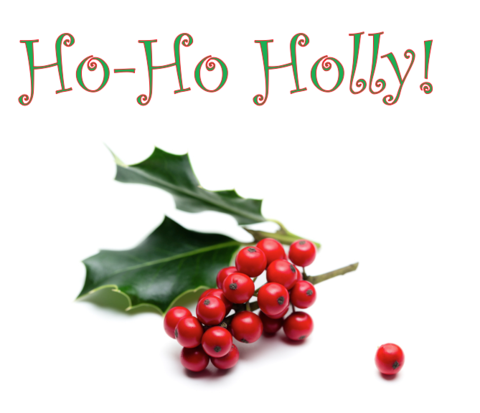Ho Ho Holly!