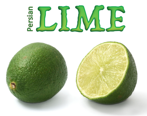 Lime (Natural)