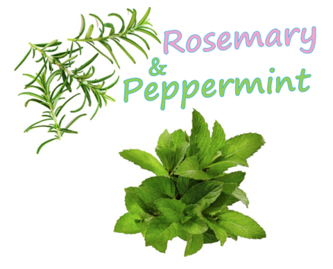 Rosemary & Peppermint (Natural)