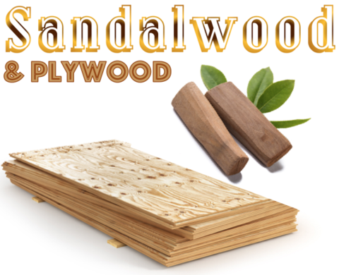 Sandalwood & Plywood