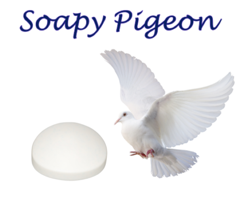 Soapy Pigeon